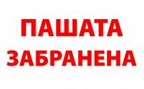 40x30_Ne_palete_Pashata-02